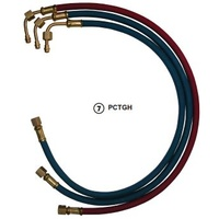 PCTGH-5/8 Torch hose set SG-30