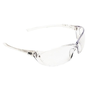 Richter Safety Glasses ProChoice® 6302 main image